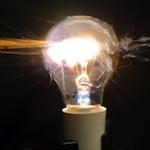 bulb copy